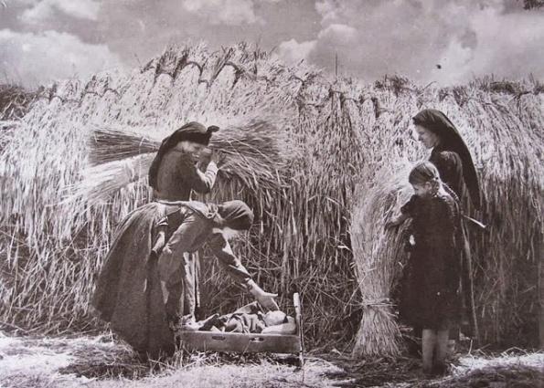 Αποτέλεσμα εικόνας για αγροτες στα χωράφια στη δεκαετία του 1960